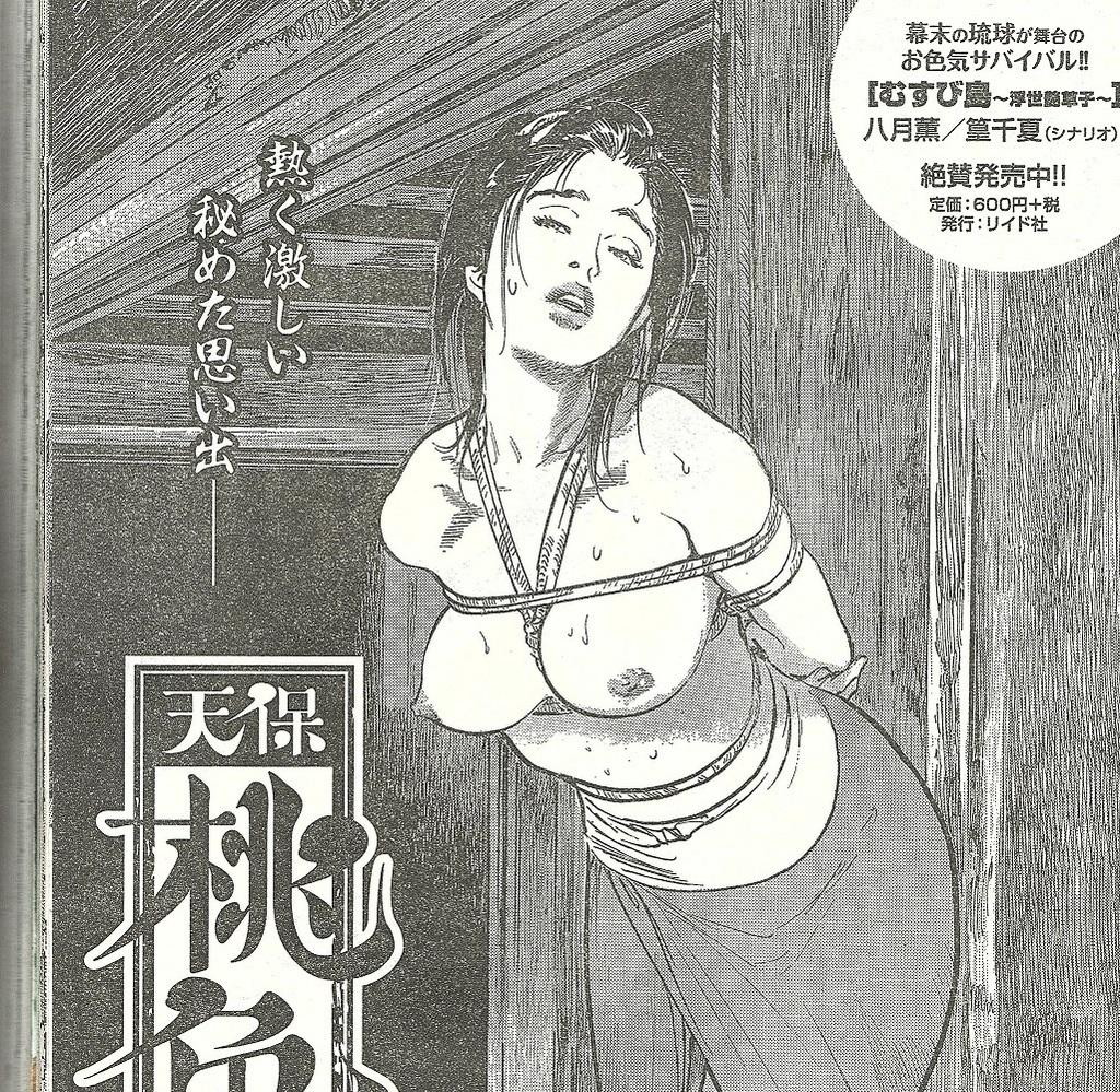 桃色水滸伝2.jpg