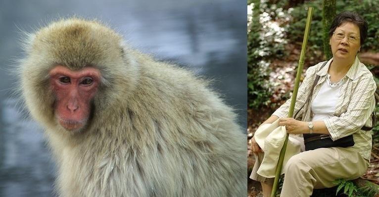 猿とおばはん.jpg